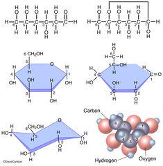 Diagram, molecular structure, glucose molecule, C6-H12-O6