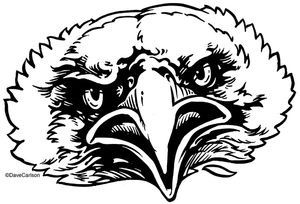 B&W, ink drawing, bald eagle face, bald eagle