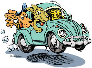 Critters, Road Trip, cartoon, dog, cat, sunday drive, vw bug