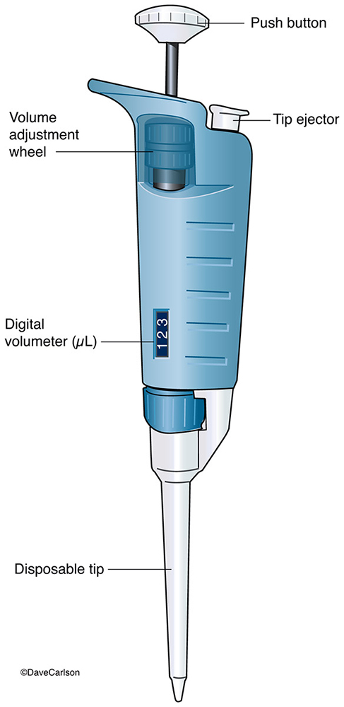 micropipette, laboratory instrument, used to transfer small amounts of liquids, less than 1 ml  , photo