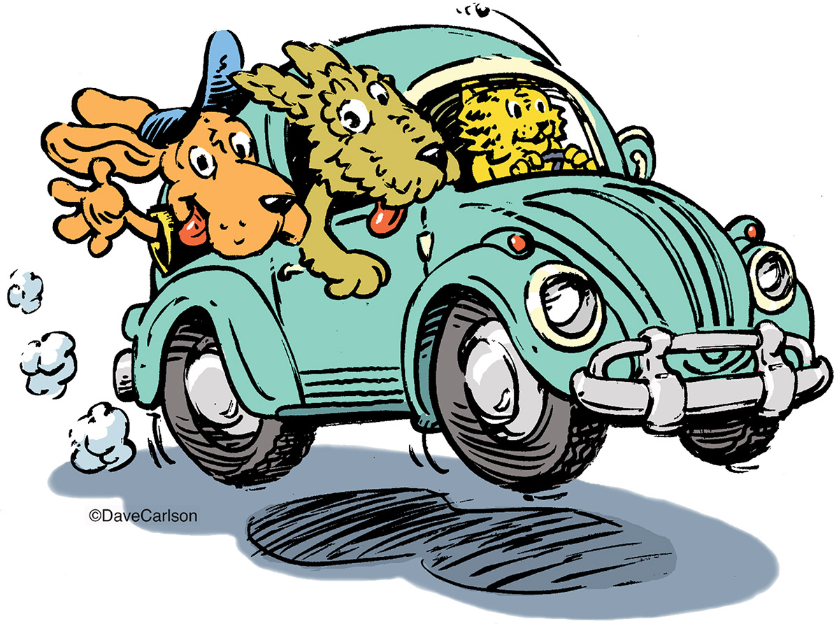 Critters, Road Trip, cartoon, dog, cat, sunday drive, vw bug, photo